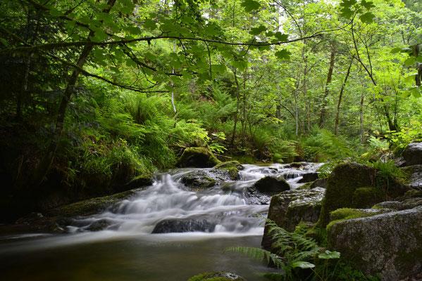 Heiliggeist Wasserfälle; Foto: Sabine Mathis