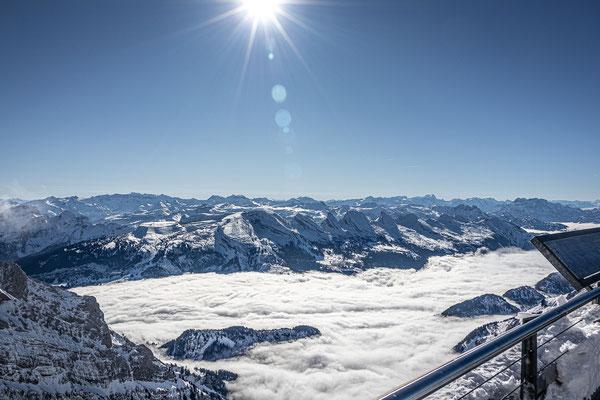 Säntis über den Wolken; Foto: Thomas Schulter