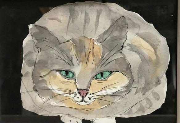 Katze, 13x18cm, Aquarell