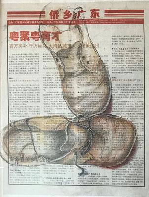 Latschen, 30x40cm, Mixed Media auf Zeitung