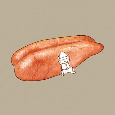 『たらこ』FOODS AND AN ELF、オリジナル、透明水彩、2017