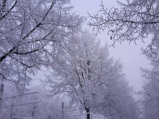 Wintereinbruch in Deutschland.
