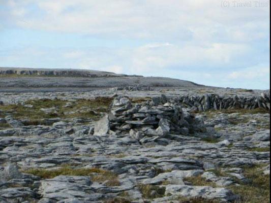 Nur Stein in der Burren-Region/ Irland.