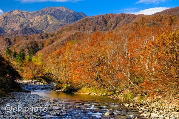 秋の銀山平