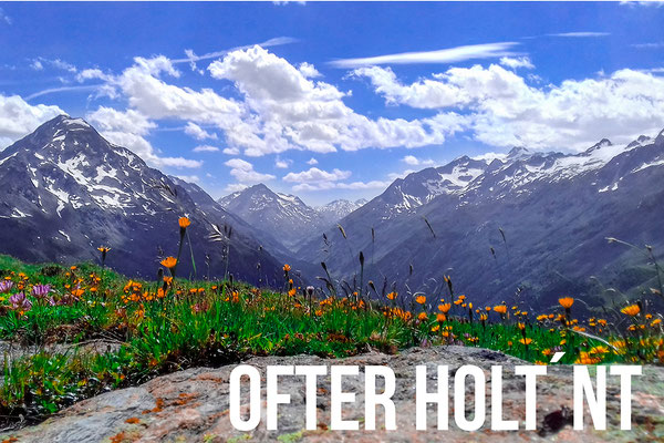 ofter holt n´t