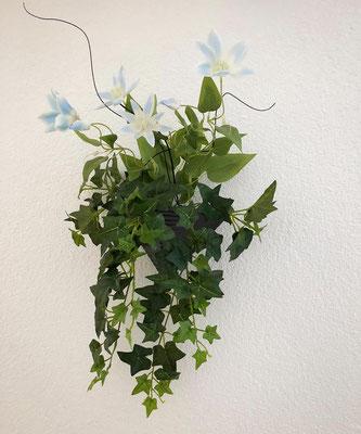 clematisblüten mit efeu wanddekoration
