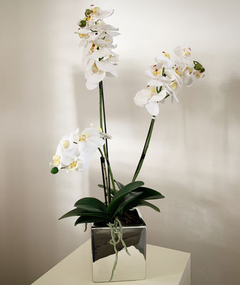 Silbertopf mit weissen Orchideen