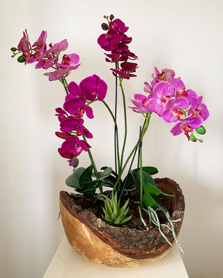 Orchideen in handgefertigter Holzschale