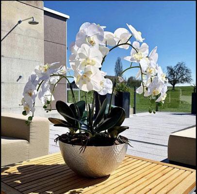 Orchideenpracht in Silberschale gehämmert