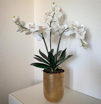 Orchideen in Goldgefäss