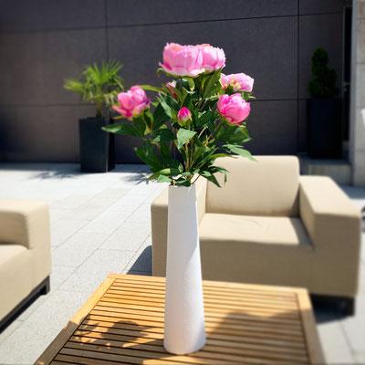 pfingstrosen in hoher vase