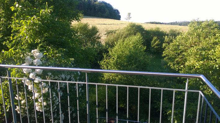 Blick vom Balkon des zubuchbaren Zimmers