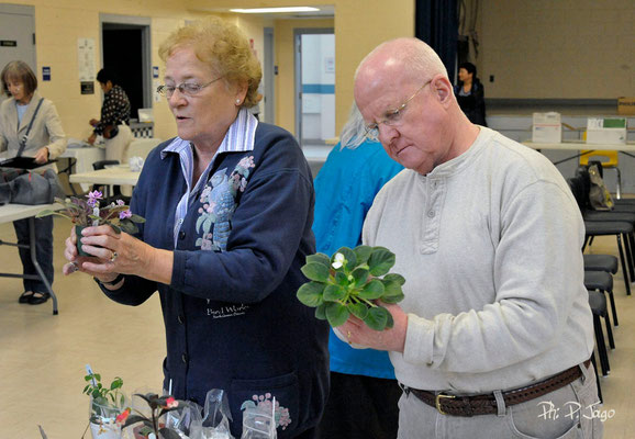 Jill Ellwood and Paul Kroll looking at the plants on our Leaf & Plants exchange.