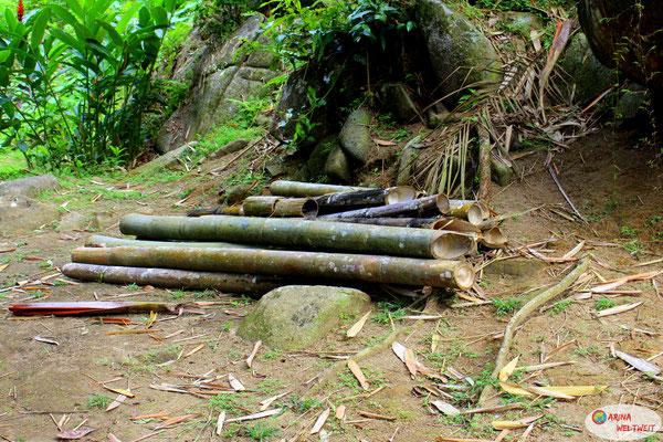 gerodeter Bambus