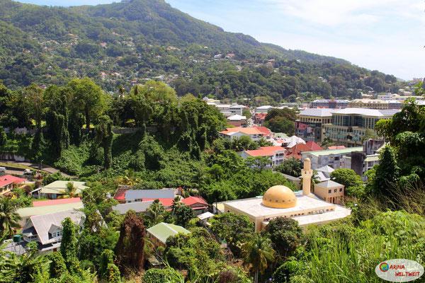 Blick von Bel Air - die Hauptstadt mit Moschee mitten im Dschungel
