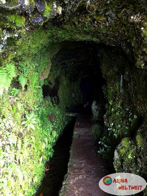 Die Durchquerung dieser lichtkargen Tunnel gehört zur Wanderung dazu!