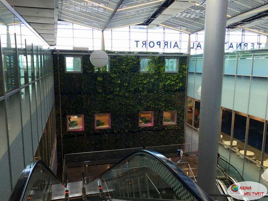 Flughafen Mauritius