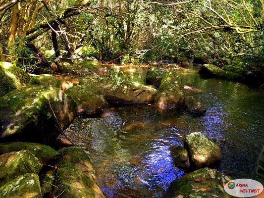 Den Flusslauf haben wir immer wieder überquert. Von Stein zu Stein.