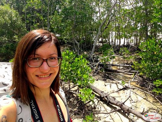 Willkommen in den Mangroven!
