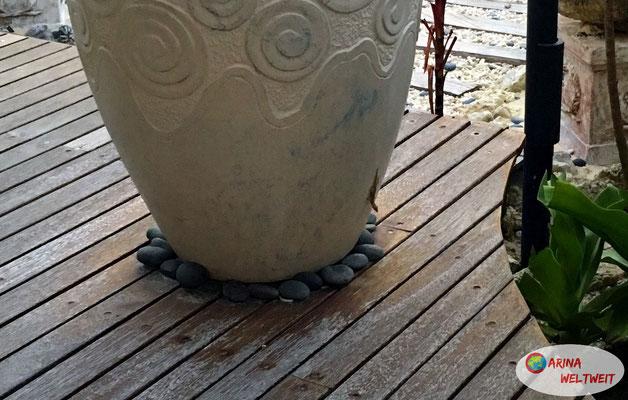 ein Gecko beäugte mich neugierig
