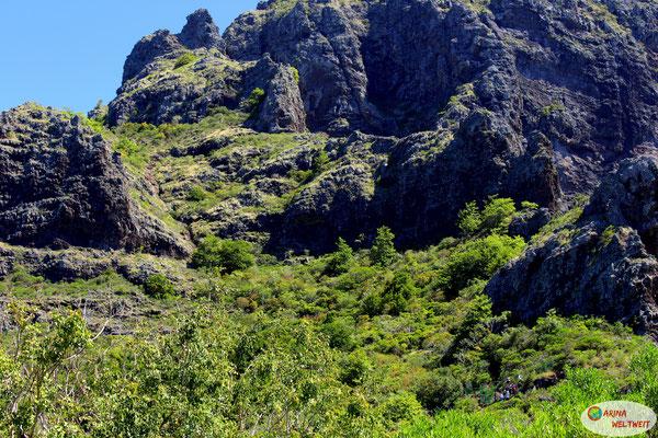 Seht ihr die grüne Absperrung? Dahinter geht es nur mit Bergführer weiter.