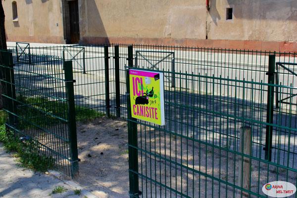 der Kackplatz für Hunde