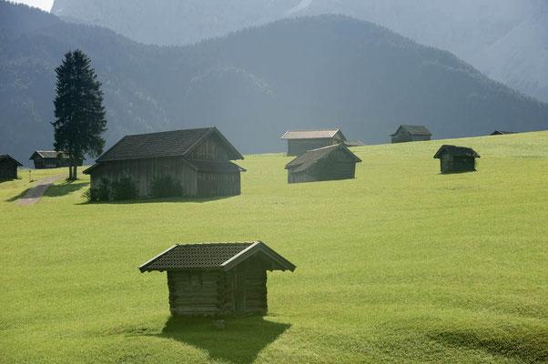 Buckelwiesen, Werdenfelser Land / ch078727