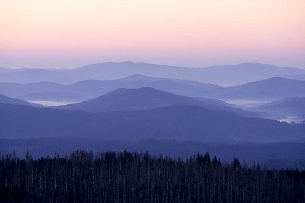 Blick vom Lusen auf den Bayrischen Wald in der Morgendämmerung, Bayern / chs02400