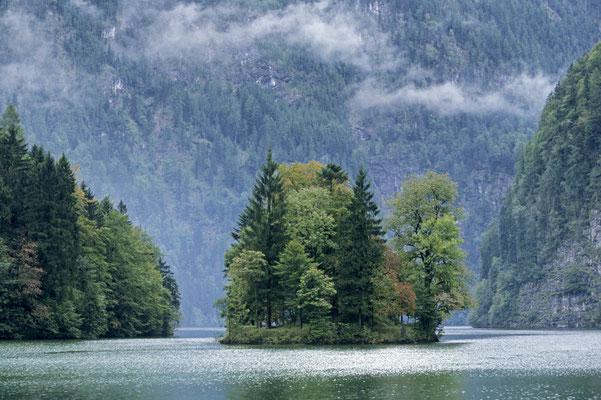 Insel Christlieger im Königssee, Nationalpark Berchtesgaden, Bayern / chs02380