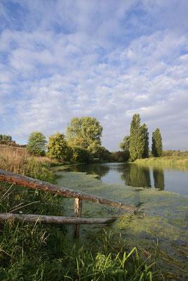 Lippe im Herbst, Nordrhein-Westfalen / ch181378