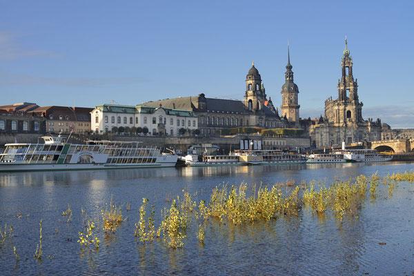 Dresden / ch193306