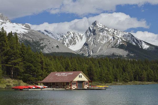 Maligne Lake / ch157465