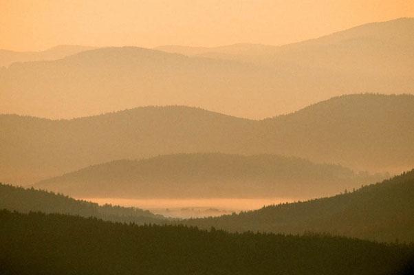 Blick vom Lusen auf den Bayrischen Wald in der Morgendämmerung, Bayern / chs02392