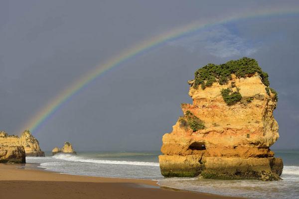 Algarve, Portugal / ch170469