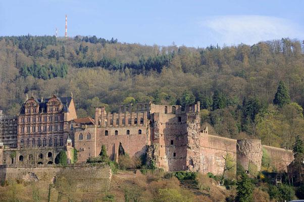 Schloss, Heidelberg / ch105767