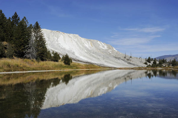 Canary Spring, Mammoth Hot Springs / ch059611