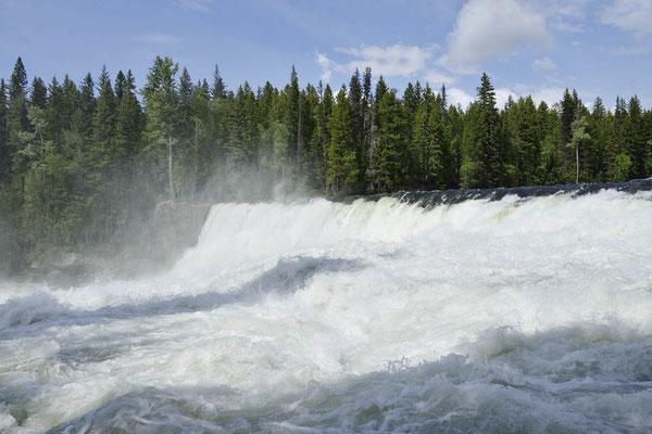 Dawson Falls / ch156795