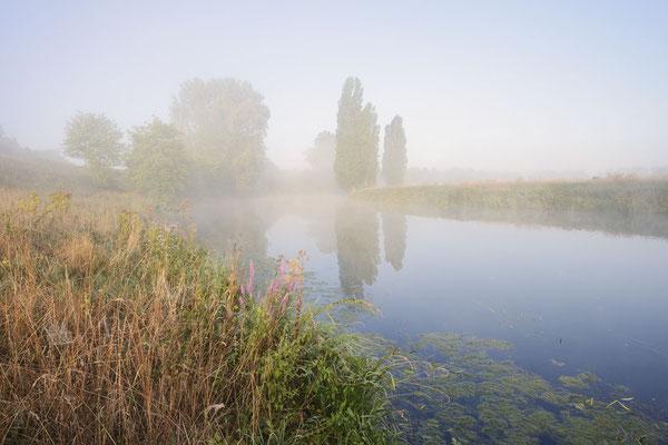Lippe im Herbst, Nordrhein-Westfalen / ch191306
