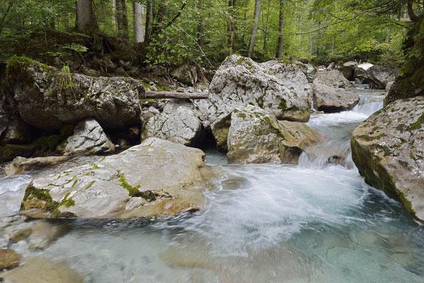 Weißbach, Österreich / ch164553