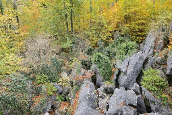 Felsenformationen im Herbst, Nordrhein-Westfalen / ch196843