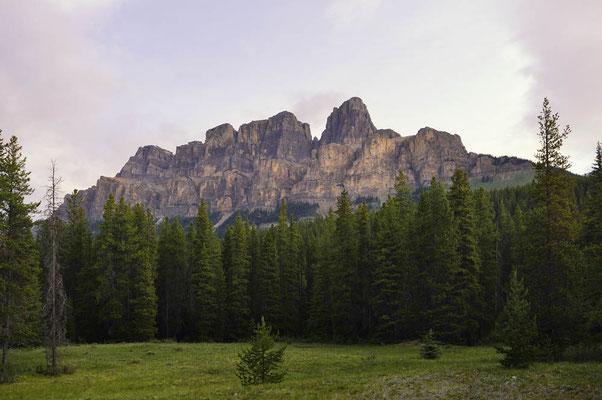 Castle Mountain / ch158185a