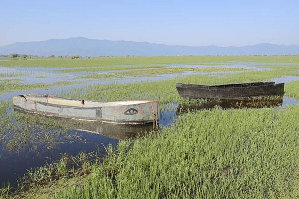 Kerkini-See, Griechenland / ch074708