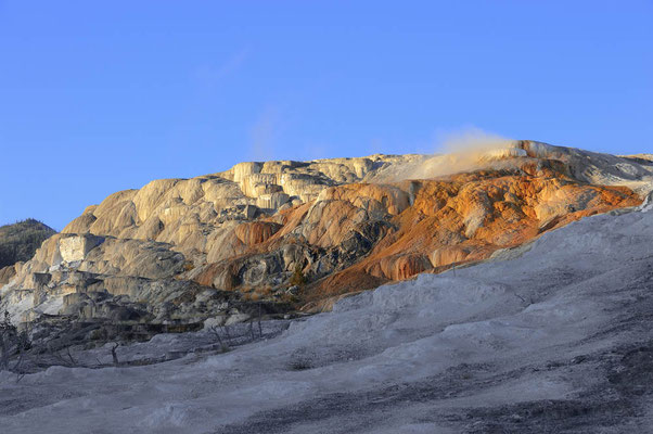 Mammoth Hot Springs / ch059448