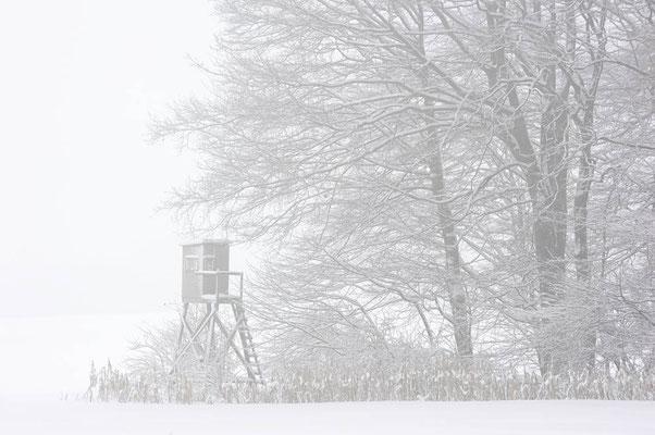 Hochsitz im Winter, Nordrhein-Westfalen / ch103947