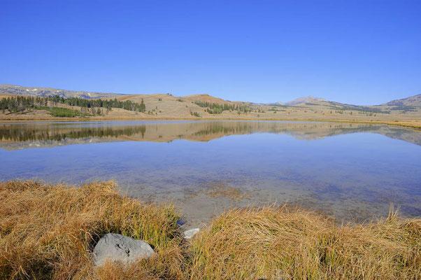 Swan Lake / ch061584