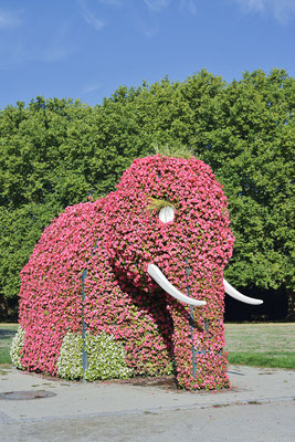 Elefanten-Skulptur, Hamm / ch181336