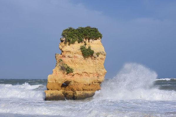 Algarve, Portugal / ch179040