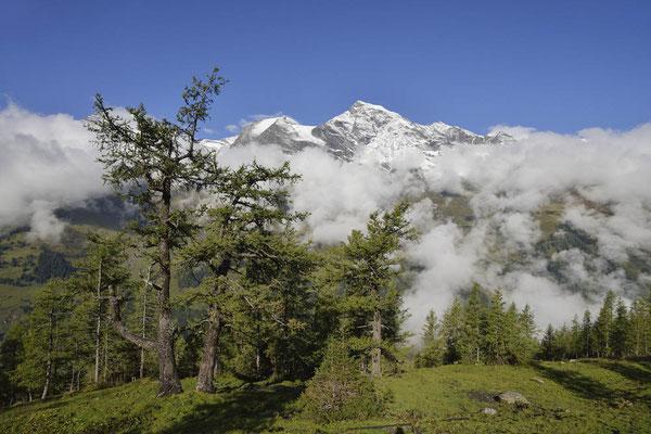 Nationalpark Hohe Tauern, Österreich / ch164650