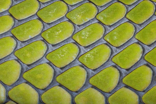 Gewöhnliche Mamba oder Blattgrüne Mamba (Dendroaspis angusticeps), Hautdetail  / ch015400