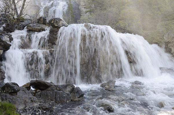 Tangle Falls / ch157665